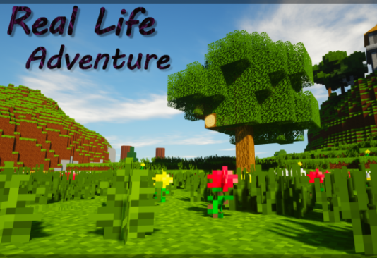 Real Life Adventure 1.14.4