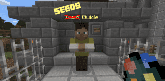 How to Use Minecraft Seeds
