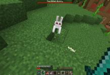 Minecraft Killer Bunny - 1