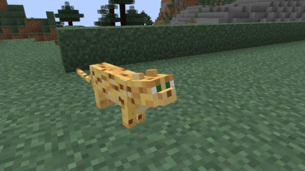 Minecraft Ocelot