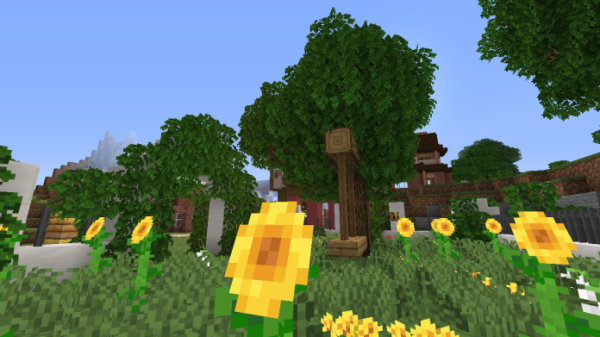 Nates Tweaks 1.16 - Minecraft Texture Pack - 1