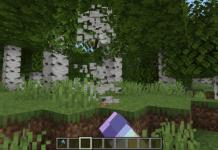 Trees Do Not Float Minecraft Mod 1.16 - 1