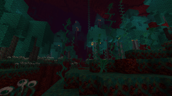 Winthor Medieval 1.16 - Minecraft Texture Pack - 1