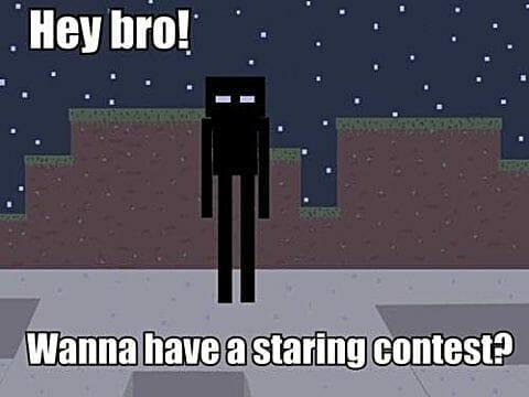 Minecraft Meme - 5