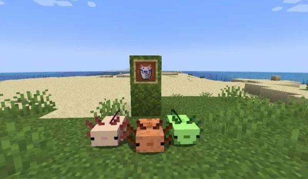Minecraft Live 16x Resource Pack 1.18 3