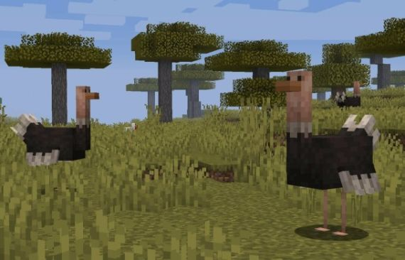 Top 5 Mobs Revealed by Mojang In Next Releases -mob 4