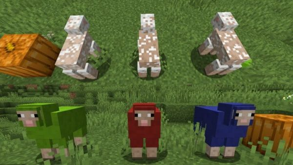 Creature Variety for 1.17.1 - Random Mobs 1.17.1 - 2